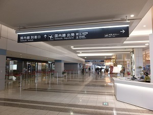 SDJ009D.jpg