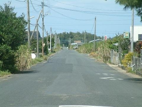 202008WAR07tokunoshima.jpg